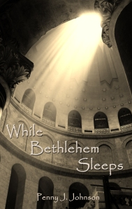 While Bethlehem Sleeps Cover