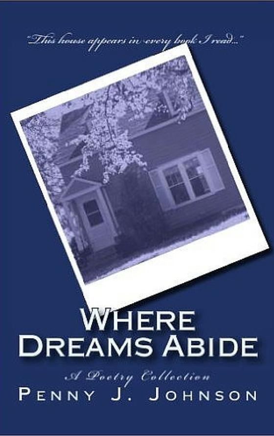 Where Dreams Abide Book Cover